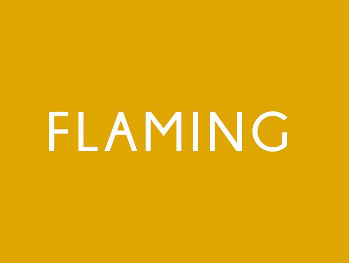 flaming definizione
